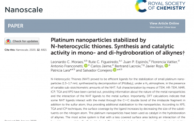 New NPs paper in Nanoscale