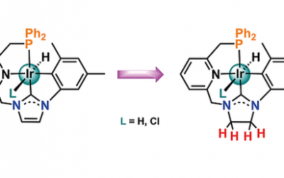 New paper about Ir–CNP complexes